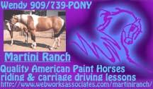 Martini Ranch Paint Horses