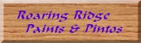 Roaring Ridge Paints